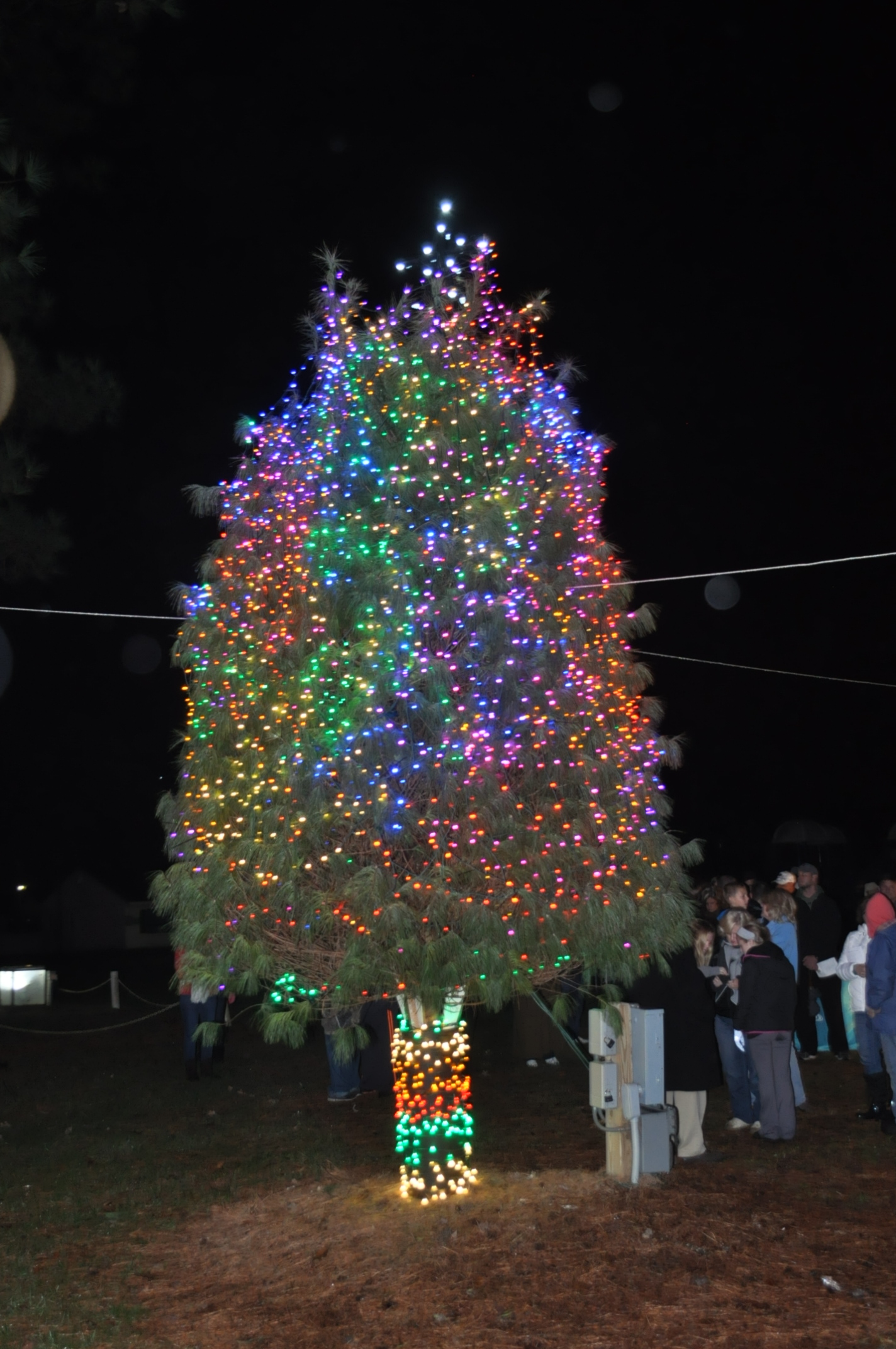 Maryland Department Of Agriculture Decorates Deer Creek Valley Tree 2015